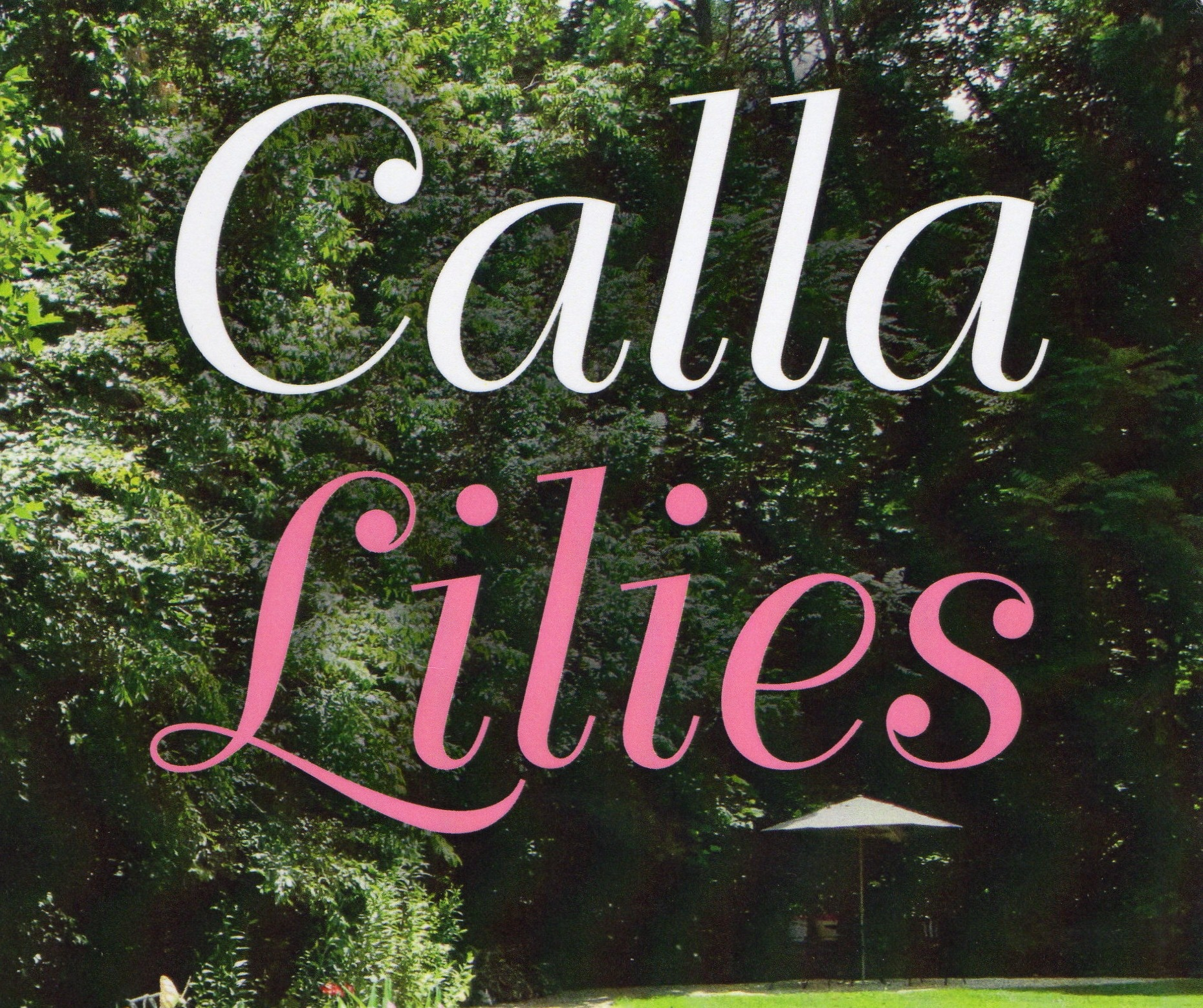 Calla Lilies: A True Story of Four Sisters and Their Struggle to Survive Abuse