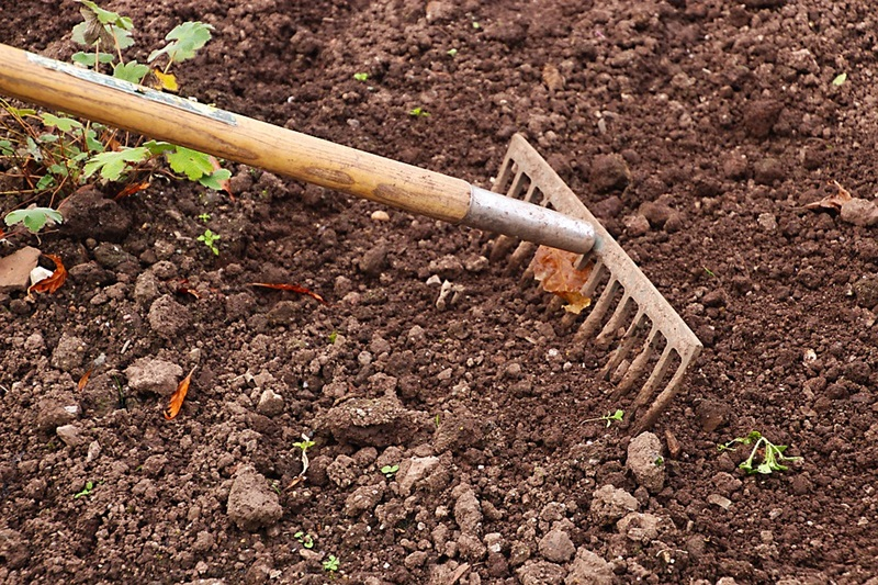 Top 5 garden tools that the Gardener Should Have