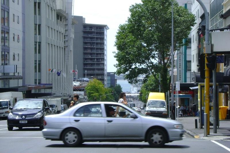 Explore Auckland
