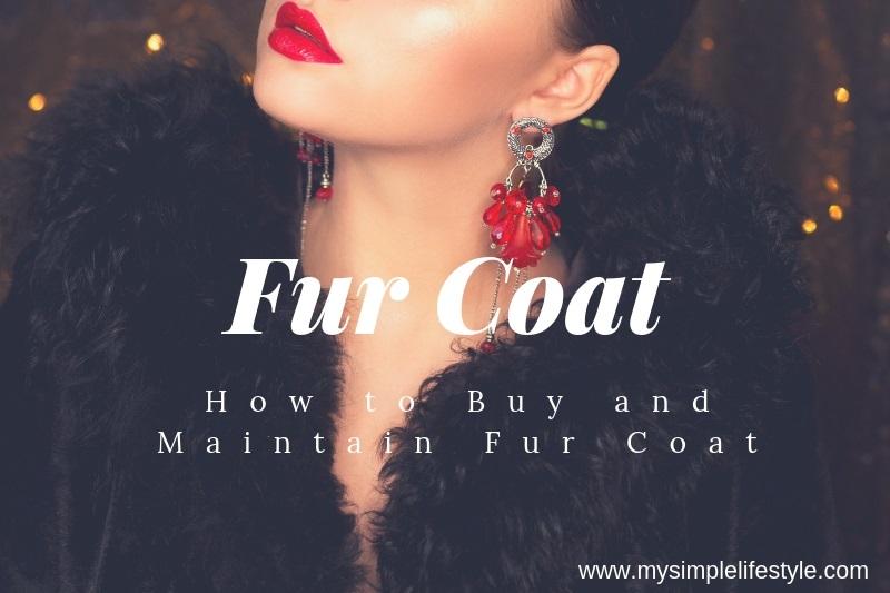 Fur Coat Guide