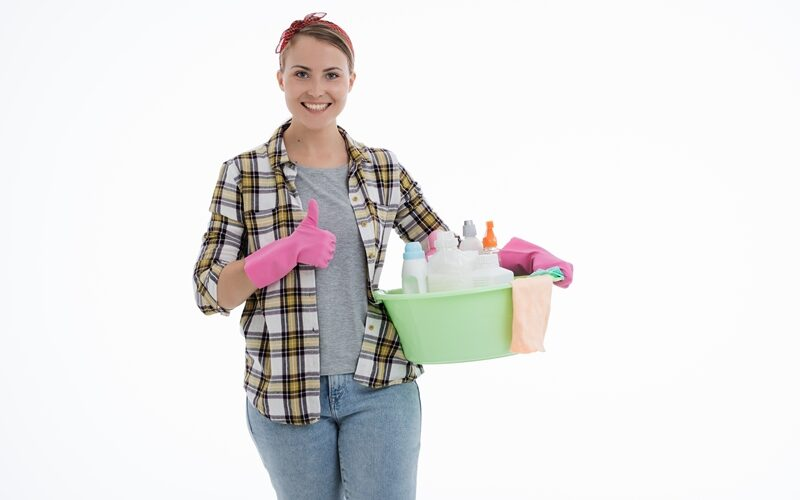 Why Hire a Maid in Singapore from a Maid Agency?